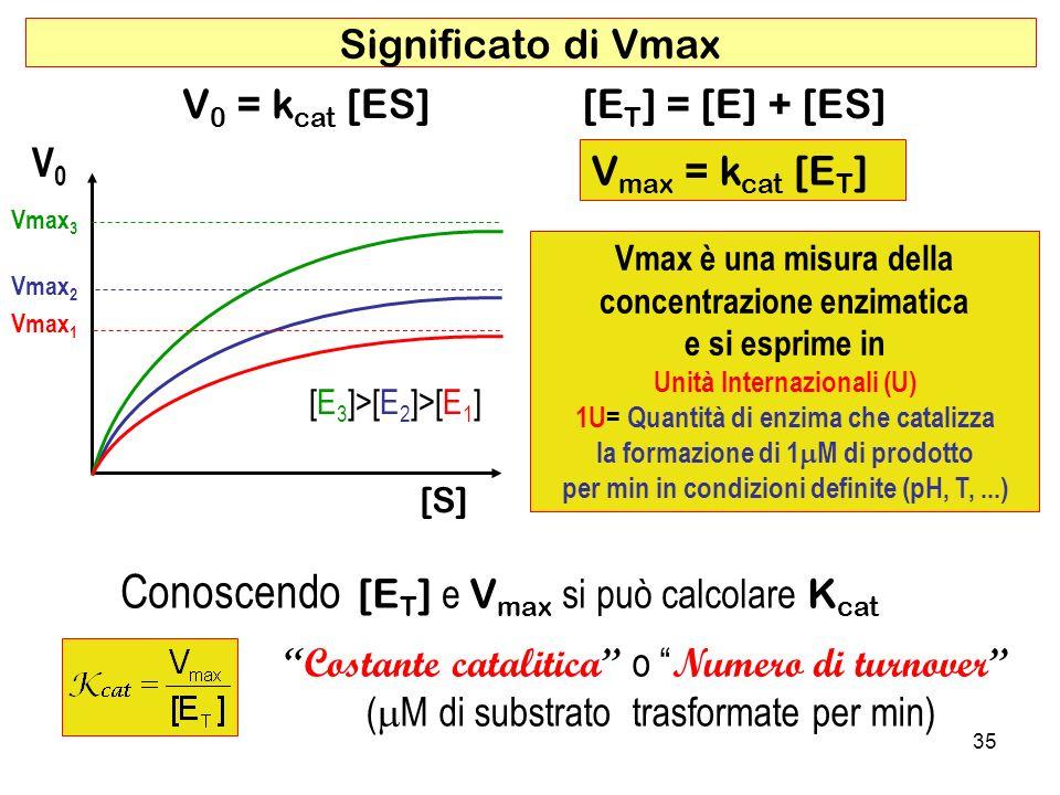 Conoscendo [ET] e Vmax si può calcolare Kcat